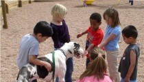 Four Exciting Ways to Teach Your Child about Animals